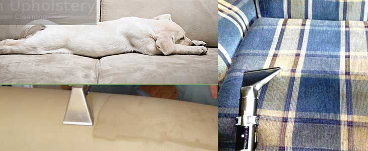 Fresh Upholstery Cleaning Burnside