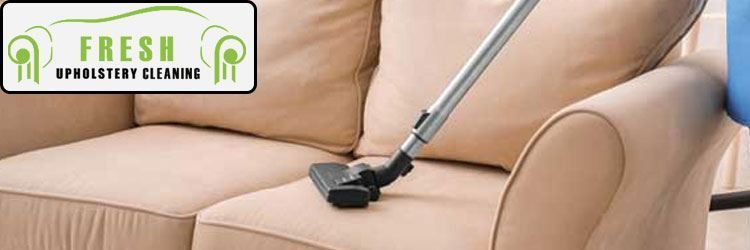 Professional Couch Cleaner