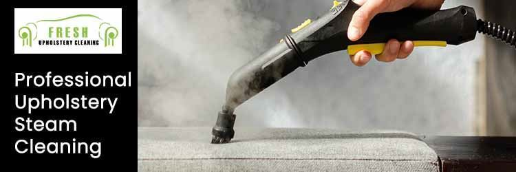 Professional Upholstery Steam Service