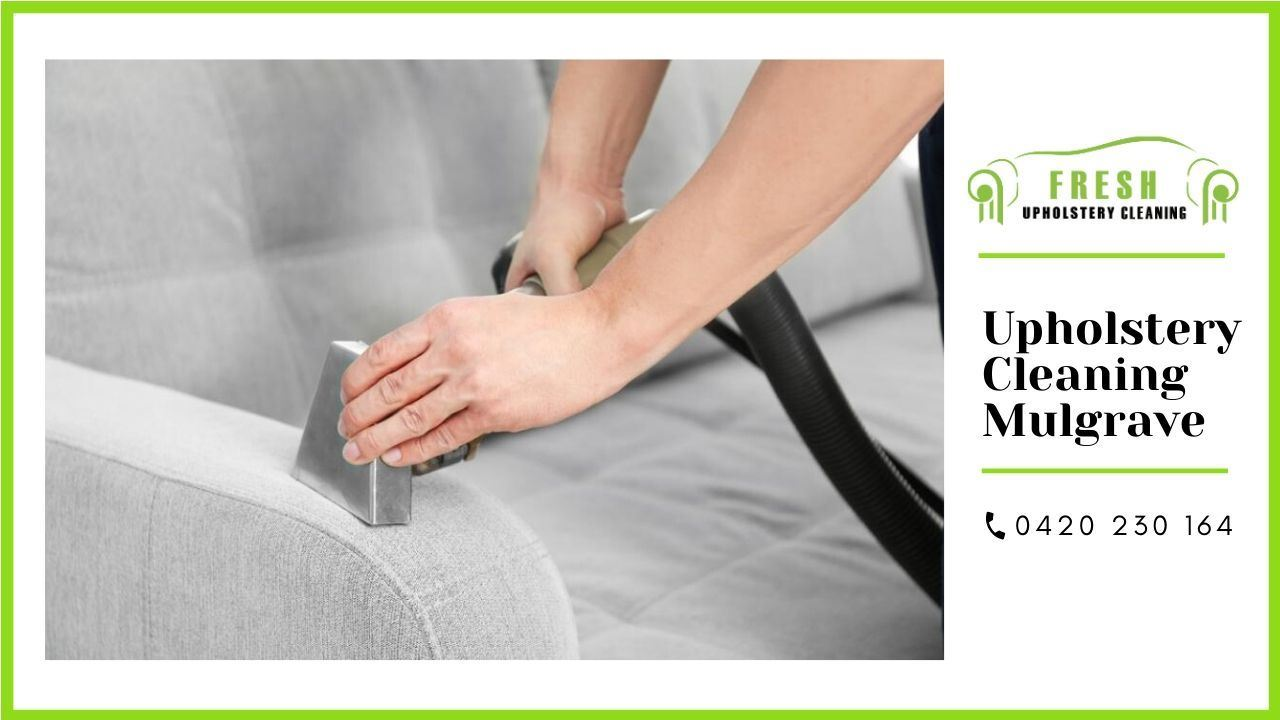 Expert Upholstery Cleaning Mulgrave