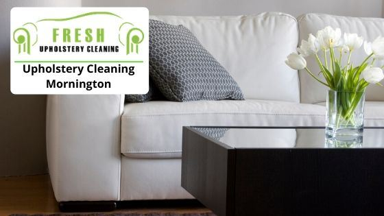 Local Upholstery Cleaners