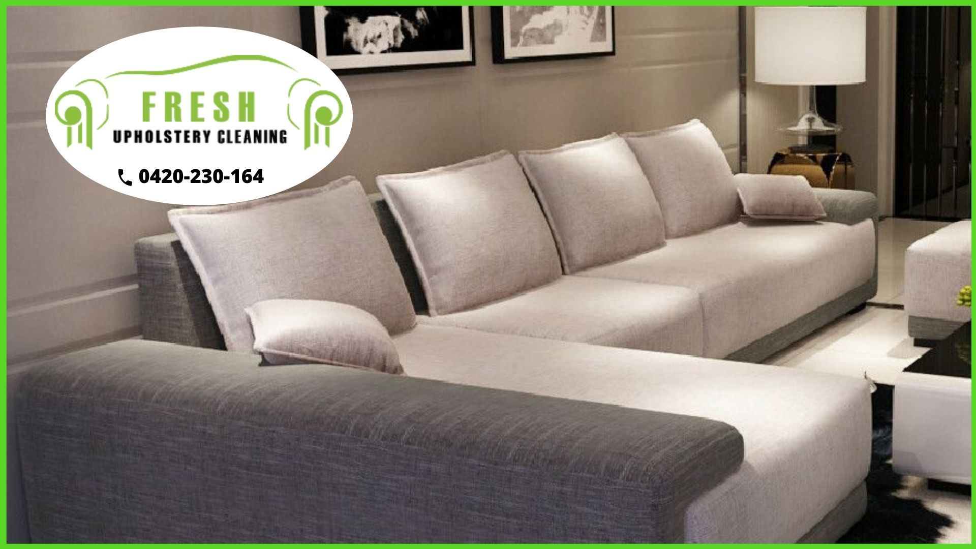 Upholstery Cleaning Maitland